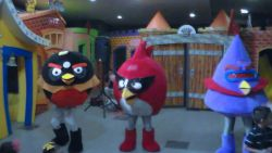 Show de Angry Birds
