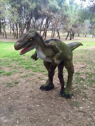 Show de Dinosaurios - Opcion 2