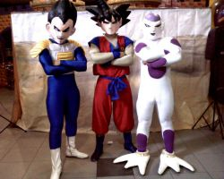 Show de Dragon Ball