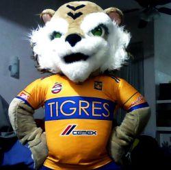 Show de Tigres y Rayados