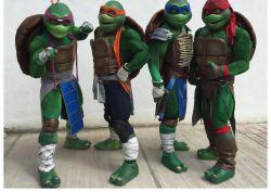 Show de Tortugas Ninja