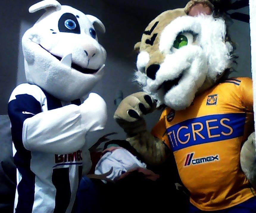 Show Tigres y Rayados